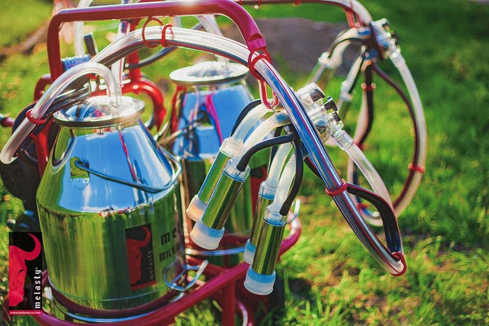 Süt Sağım Makineleri - Melasty 001