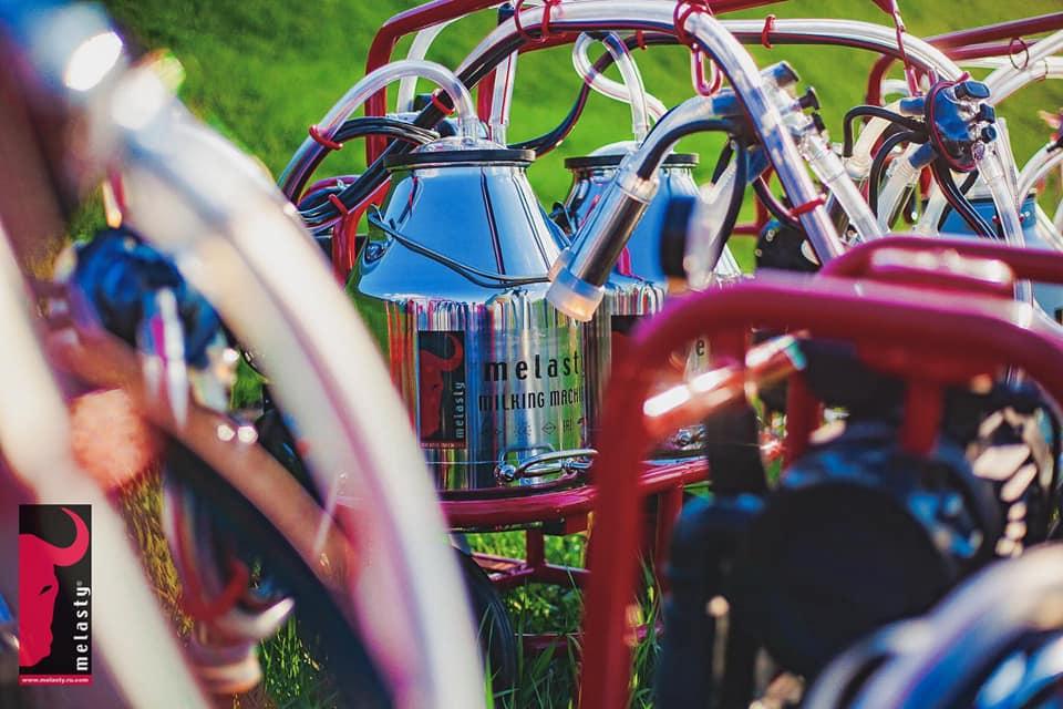 Süt Sağım Makineleri - Melasty 003 (2)
